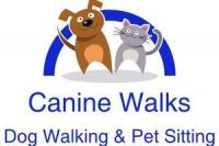 Canine Walks