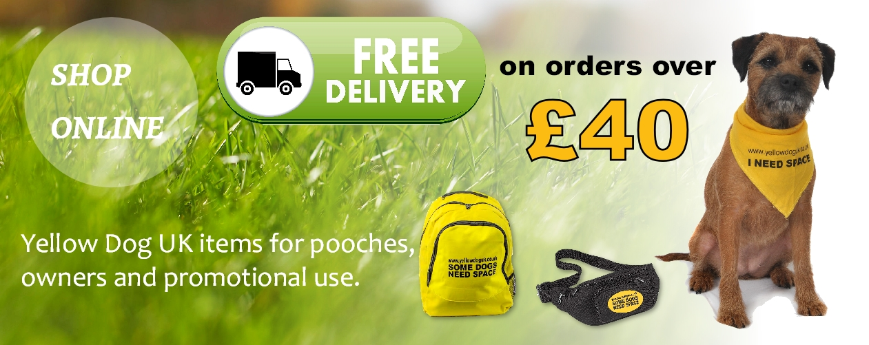 Yellow Dog Shop