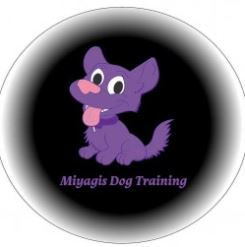 Miyagis-Dog-Training-and-Behaviourist-Stervices.JPG